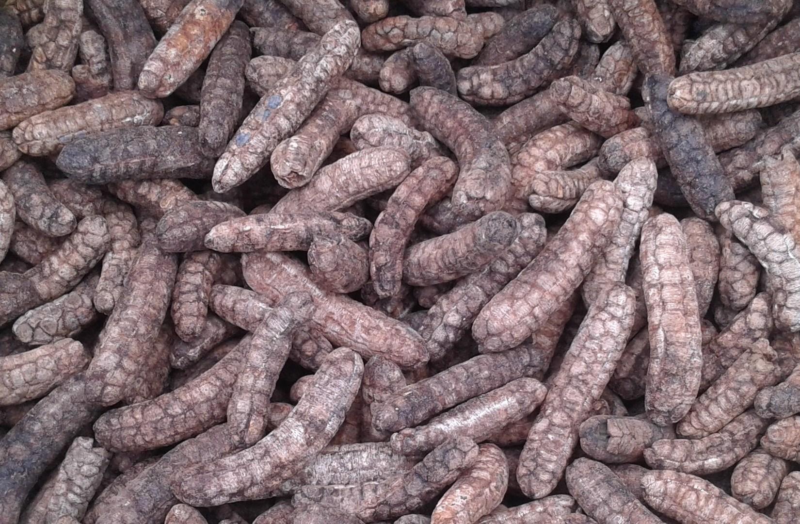 Sản phẩm được làm ra bằng cách phơi khô tự nhiên và có màu đen hơn so với chuối tự sấy