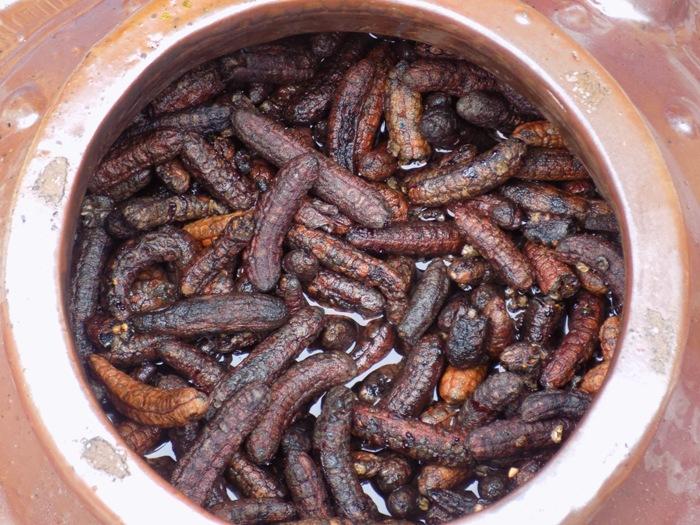 Cách ngâm rượu chuối hột rừng kết hợp gồm nhiều loại chuối khác nhau và cả hạt chuối hột rừng